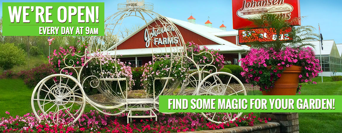 Johansen Farms Nursery & Garden Center - We're OPEN at 9am Daily
