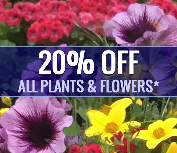 Johansen Farms Nursery & Garden Center - 20% OFF Plants & Flowers