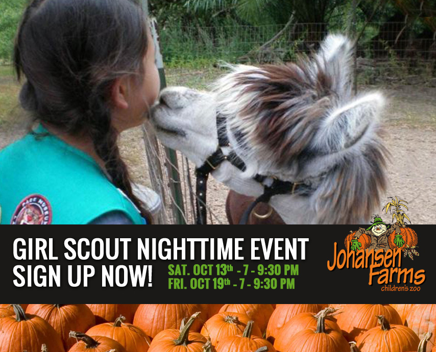 Johansen Farm Children's Zoo Girl Scout Nighttime Event